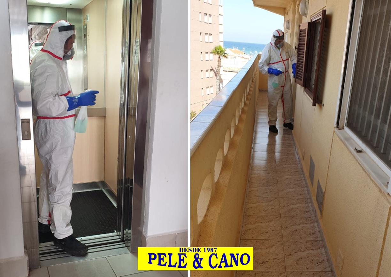 Desinfección de comunidades Torrevieja - Pele Cano